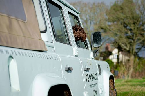 Rolo and Penrhos Landrover